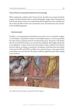Image of the Page - 27 - in The Vienna Genesis - Material analysis and conservation of a Late Antique illuminated manuscript on purple parchment
