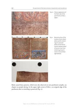 Bild der Seite - 50 - in The Vienna Genesis - Material analysis and conservation of a Late Antique illuminated manuscript on purple parchment
