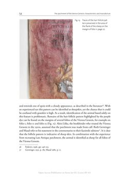 Bild der Seite - 54 - in The Vienna Genesis - Material analysis and conservation of a Late Antique illuminated manuscript on purple parchment