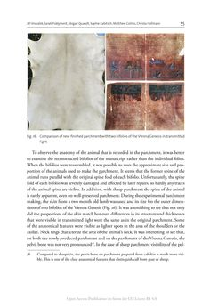 Bild der Seite - 55 - in The Vienna Genesis - Material analysis and conservation of a Late Antique illuminated manuscript on purple parchment