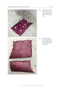 Bild der Seite - 81 - in The Vienna Genesis - Material analysis and conservation of a Late Antique illuminated manuscript on purple parchment