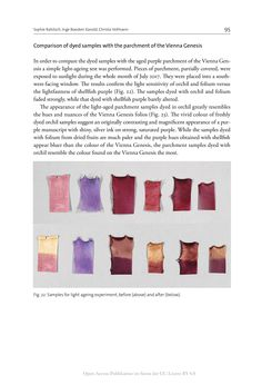 Bild der Seite - 95 - in The Vienna Genesis - Material analysis and conservation of a Late Antique illuminated manuscript on purple parchment
