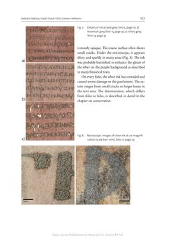Image of the Page - 127 - in The Vienna Genesis - Material analysis and conservation of a Late Antique illuminated manuscript on purple parchment