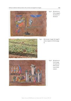 Bild der Seite - 213 - in The Vienna Genesis - Material analysis and conservation of a Late Antique illuminated manuscript on purple parchment