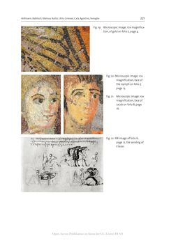 Bild der Seite - 221 - in The Vienna Genesis - Material analysis and conservation of a Late Antique illuminated manuscript on purple parchment