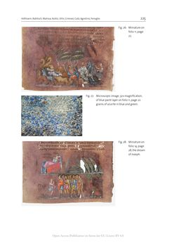 Bild der Seite - 225 - in The Vienna Genesis - Material analysis and conservation of a Late Antique illuminated manuscript on purple parchment