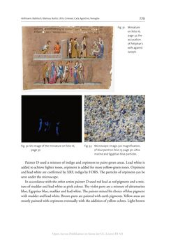 Bild der Seite - 229 - in The Vienna Genesis - Material analysis and conservation of a Late Antique illuminated manuscript on purple parchment