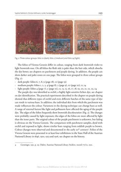 Bild der Seite - 249 - in The Vienna Genesis - Material analysis and conservation of a Late Antique illuminated manuscript on purple parchment