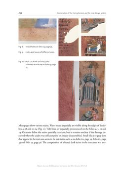Bild der Seite - 254 - in The Vienna Genesis - Material analysis and conservation of a Late Antique illuminated manuscript on purple parchment