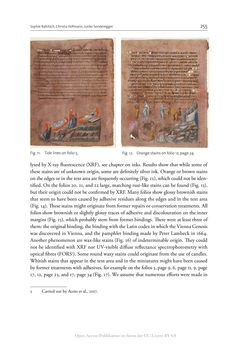 Bild der Seite - 255 - in The Vienna Genesis - Material analysis and conservation of a Late Antique illuminated manuscript on purple parchment