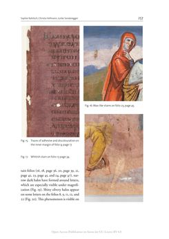 Bild der Seite - 257 - in The Vienna Genesis - Material analysis and conservation of a Late Antique illuminated manuscript on purple parchment