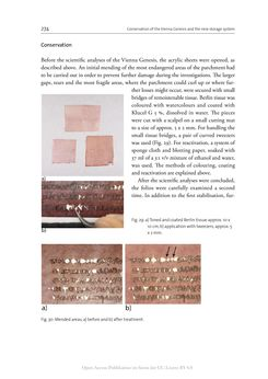 Image of the Page - 274 - in The Vienna Genesis - Material analysis and conservation of a Late Antique illuminated manuscript on purple parchment