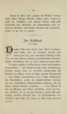 Image of the Page - 65 - in Wiener Guckkastenbilder